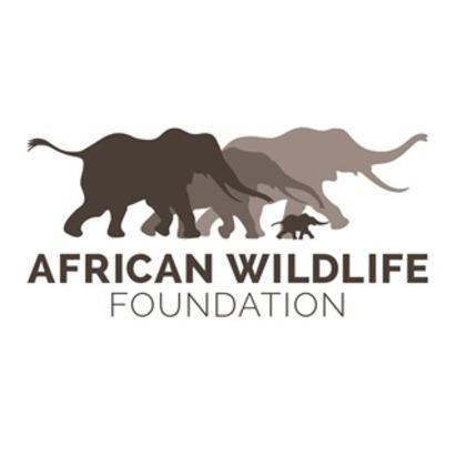 Stephanie ethan blueprint registry african wildlife foundation malvernweather Gallery