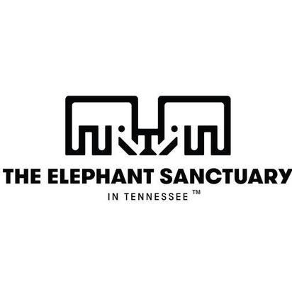 Stephanie ethan blueprint registry the elephant sanctuary malvernweather Gallery